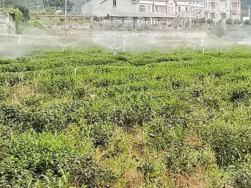 高标准农田喷灌项目